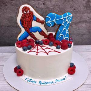 Торт Человек Паук без мастики